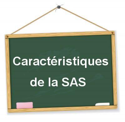 SAS description